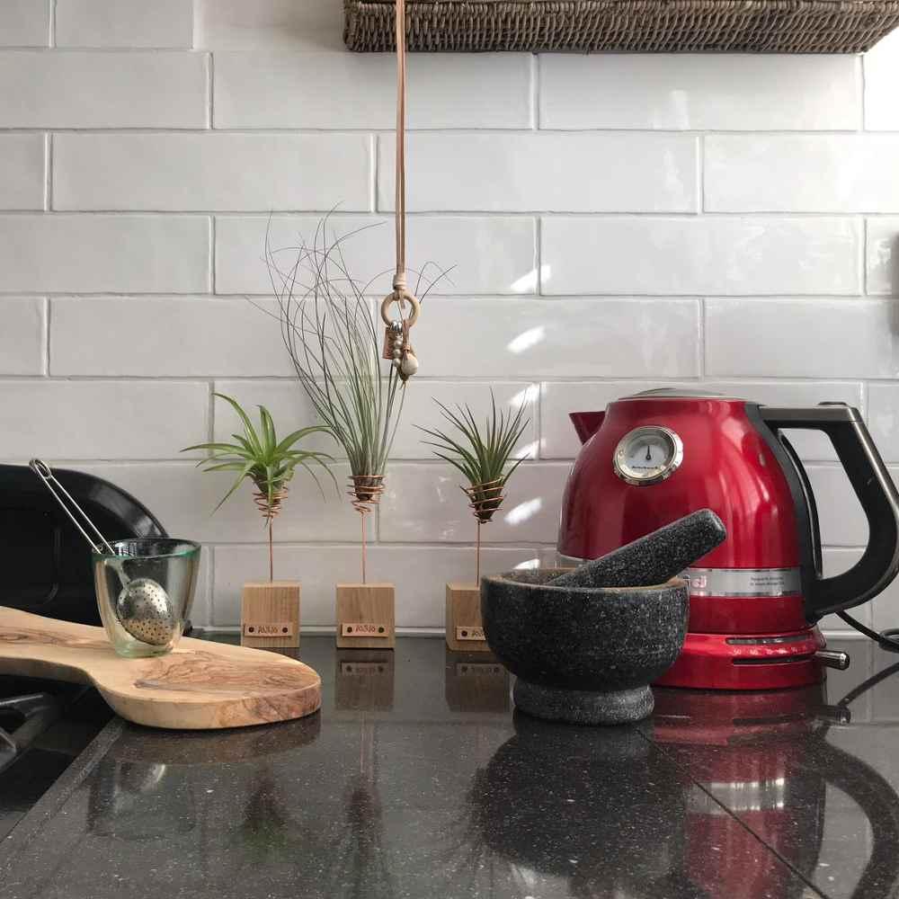 airplantjes-woonaccessoire-keuken