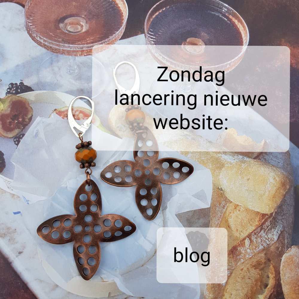 Lancering nieuwe website wishwill